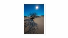 Moon-Shadows