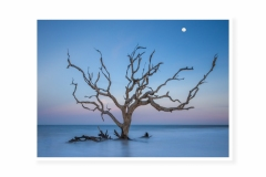Moonrise-Over-Jekyll-Island