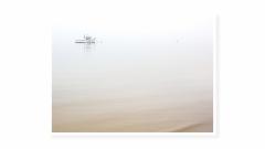 Misty-Morning_1