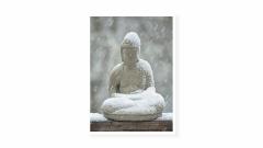 1_Winter-Buddha