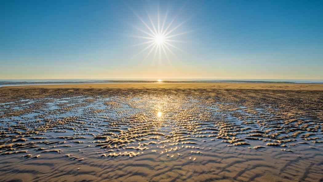 Low Tide, Sunrise, Nauset